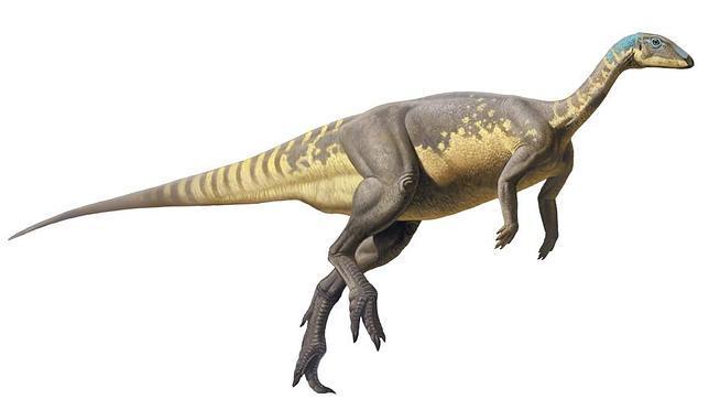 Reconstrucción de Eousdryosaurus