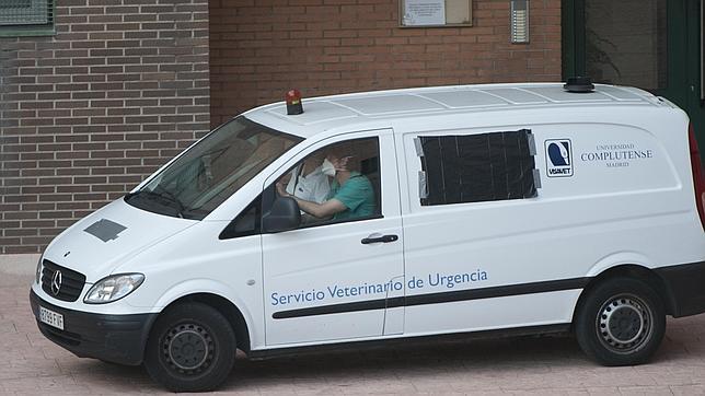 Imagen del vehículo que participó en el operativo