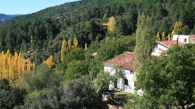 La riqueza forestal de la Sierra de Segura la convirtió en una selecta provincia marítima