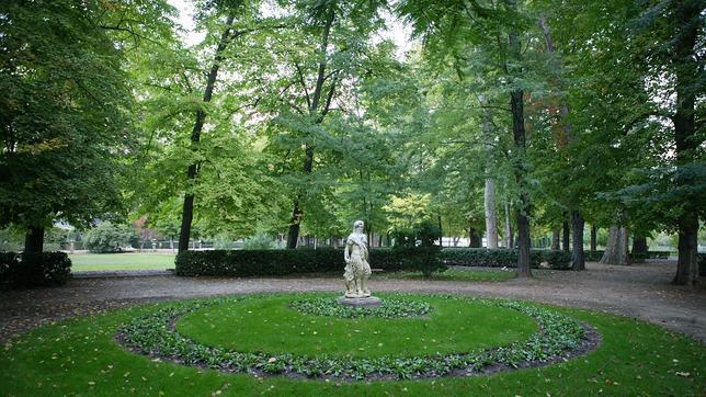 Los rboles de aranjuez quieren entrar en la champion tree for Los jardines de aranjuez