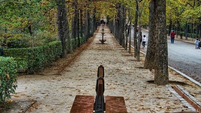 Los Mejores Parques Urbanos Para Salir A Correr En Espa A
