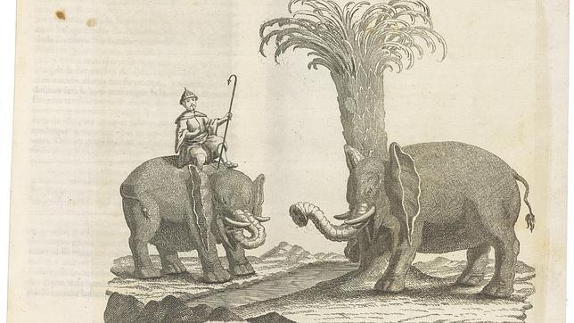 Obra de Andrés Ramirez, de 1773, sobre la caza del elefante, que forma parte de la colección Dámaso Gutiérrez Arrese
