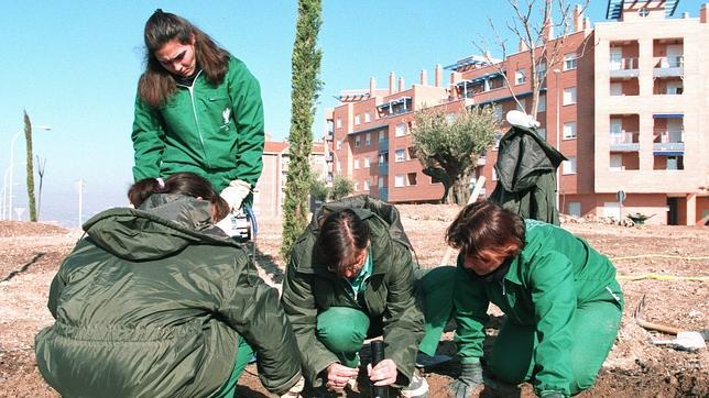 Cu nto cobra un jardinero municipal - Trabajo jardinero madrid ...