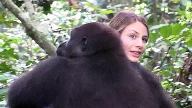 El emotivo momento en que una británica se reencuentra con los dos gorilas con los que compartió su infancia