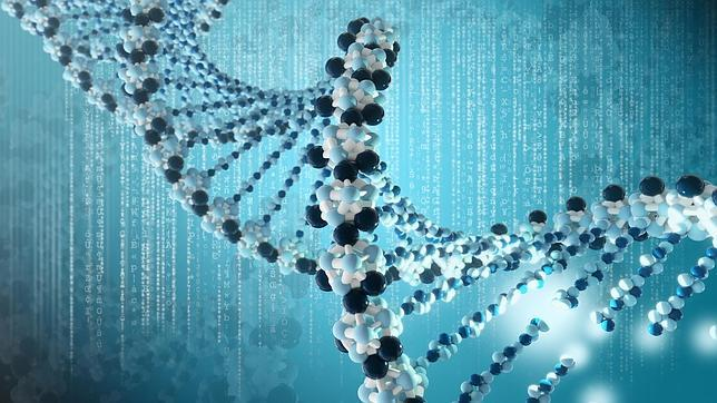 En busca de las mutaciones genéticas de los españoles que promueven enfermedades