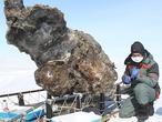 Más cerca de la clonación del mamut que rezuma sangre