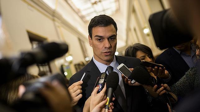El Congreso tumba la proposición no de ley del PSOE sobre el maltrato animal