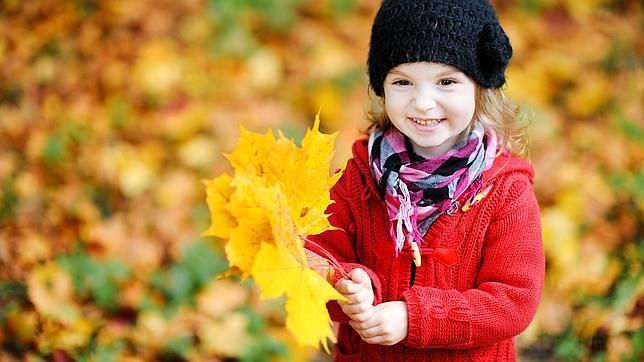 Hace millones de años, los árboles invirtieron parte de su energía en cambiar sus hojas de color