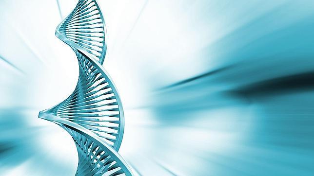 Doble cadena helicoidal de ADN