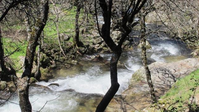 Un ejemplo de la belleza del camino hacia las Cascadas del Purgatorio