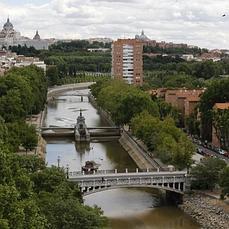 El bodeguero que hizo creer a todo Madrid que una ballena nadaba ... - ABC.es