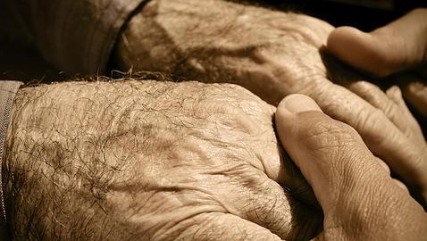 La clave de la longevidad está en la expresión del colágeno