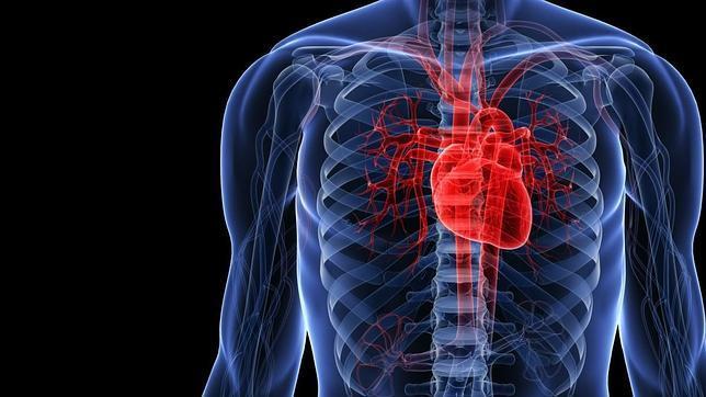 El objetivo último del proyecto es predecir y evitar la aparición de arritmias cardiacas