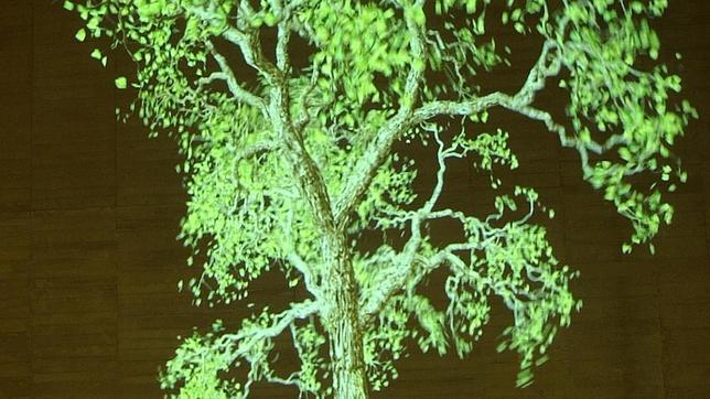 «Eye Catching 5», de Jennifer Steinkamp, una de las piezas expuestas actualmente en el MUSAC