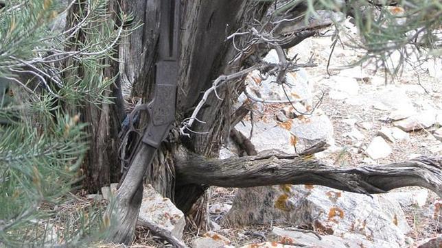 El rifle Winchester que lleva más de un siglo apoyado contra un árbol de Nevada