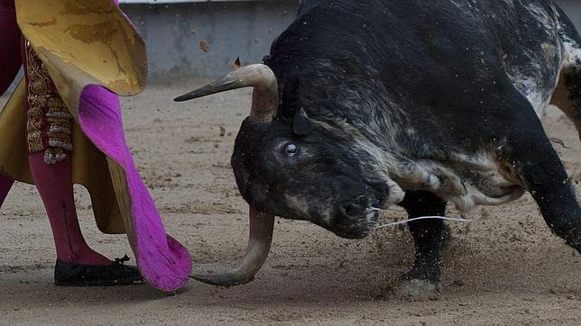 Diferencias entre el toro que desea el torero y el toro que añora el aficionado