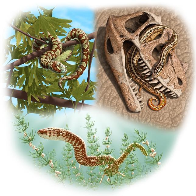 La serpiente de Eva andaba sobre sus patas