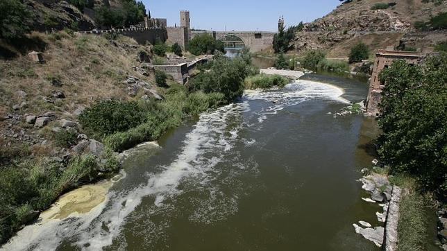 El estudio dice que el río Tajo ha sido durante años «absolutamente olvidado» y «muy maltratado»