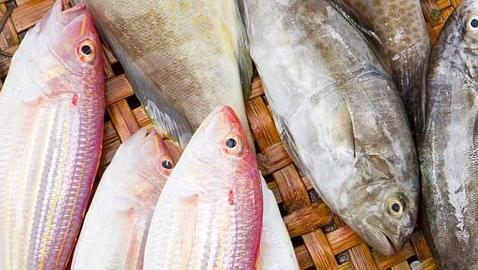 Asocian el mercurio de algunos pescados con riesgo de enfermedades autoinmunes