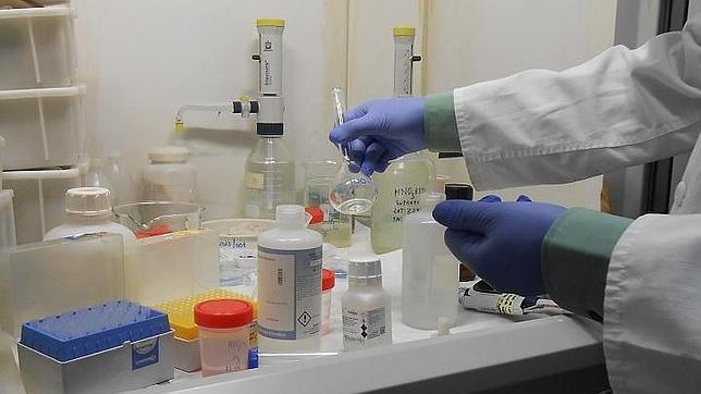 El filamento de una bombilla o una muestra de tierra pueden ser cruciales en una investigación