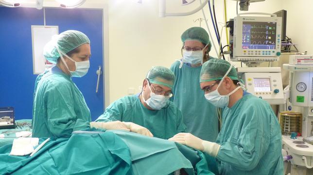 Un médico italiano quiere practicar el  primer trasplante de cabeza en 2017