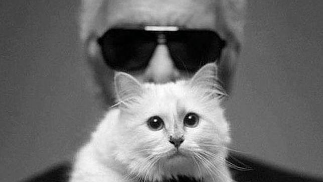 Lagerfeld con su gata