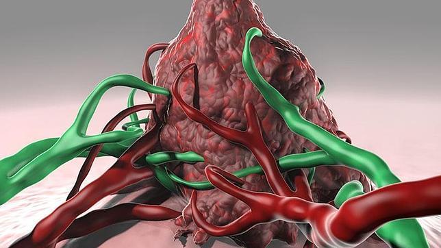 Los tumores que viven en ambientes de hipoxia desarrollan un ambiente hostil