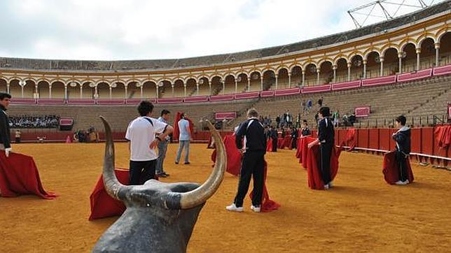 ¿Quieres aprender a torear en la Maestranza de Sevilla?