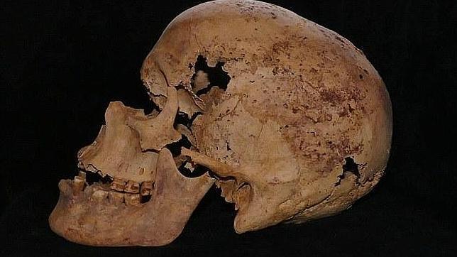 Los restos hallados se encuentran en muy buen estado de consevación