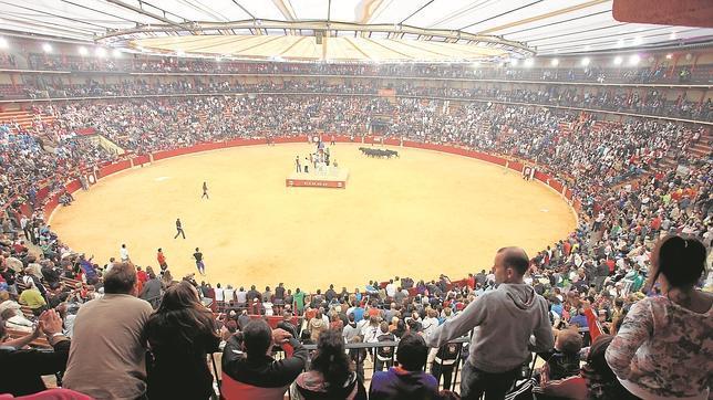 Los menores de 16 años podrán participar en los encierros de vaquillas en Aragón