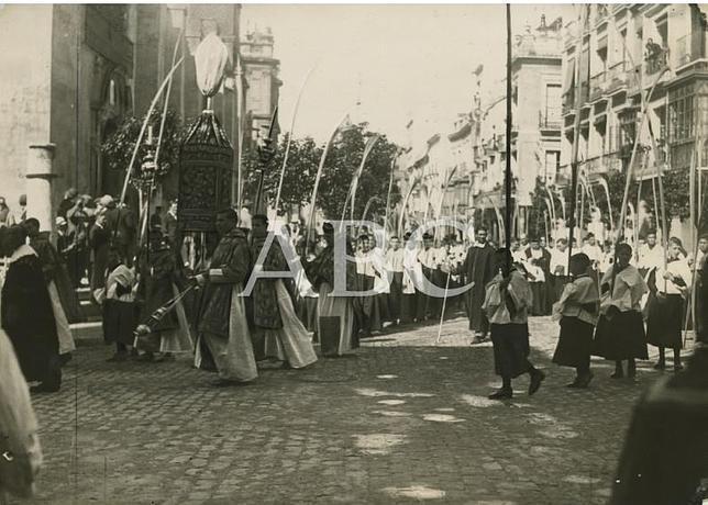 Fotograf as antiguas de abc la procesi n de las palmas - Fotografia las palmas ...
