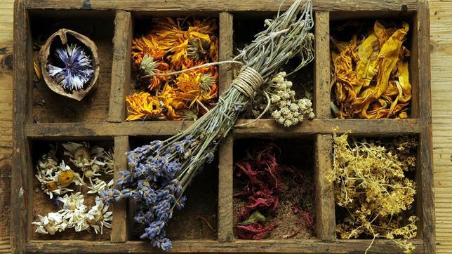 Mulet pone en duda la eficacia de las plantas medicinales