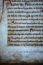 La luz ultravioleta revela rostros y versos borrados del Libro Negro de Carmarthen