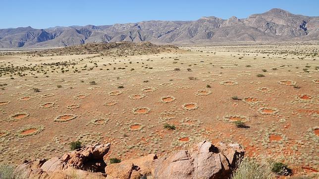 Los misteriosos «círculos» en el desierto de Namibia son como las células de piel