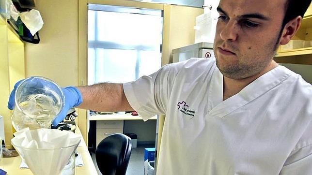 Un fármaco contra la leucemia también permite «atacar» el cáncer de páncreas