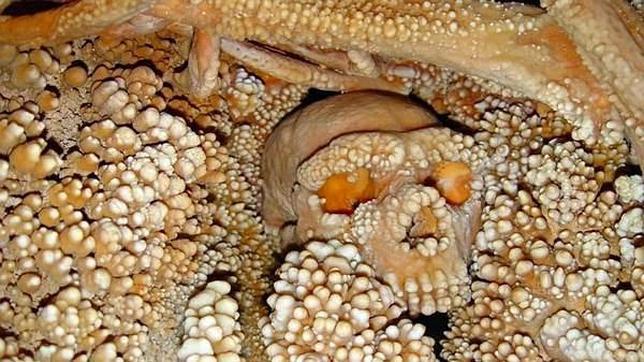 Los restos encontrados en Italia han sido extremadamente difíciles de recuperar