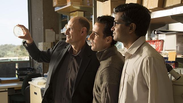 De izquierda a derecha, los investigadores Juan Carlos Izpisúa, Alejandro Ocampo y Pradeep Reddy, en el Instituto Salk donde han desarrollado la técnica