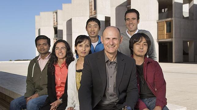 «Apagar» y «encender» genes para frenar el envejecimiento