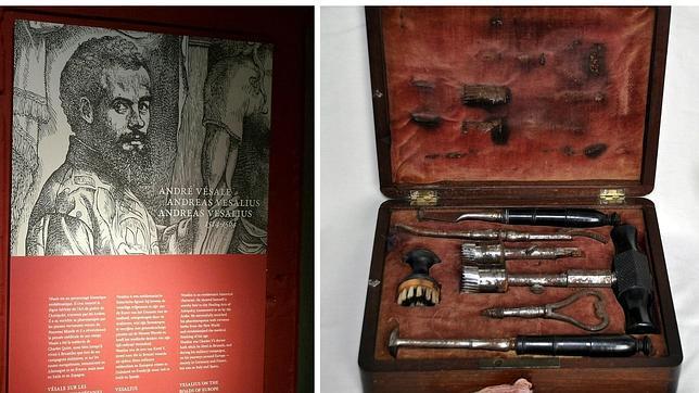 Bruselas rinde homenaje a Andrés Vesalio, médico de Carlos V