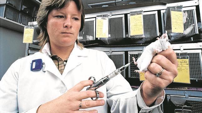 Dieciséis premios Nobel piden que se mantenga la investigación con animales