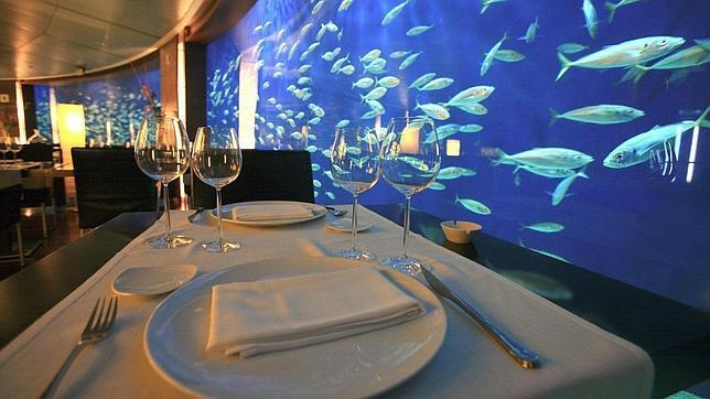 Los diez restaurantes m s espectaculares para visitar en for Aquarium valencia precio