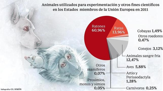 El número total de animales utilizados para experimentación u otros fines científicos se situó justo por debajo de 11,5 millones en 2011, lo que supone una reducción de más de medio millón de animales respecto a 2008