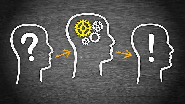 Logran devolver la memoria a ratones con amnesia