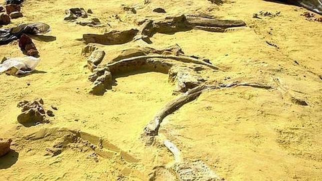 Los primeros africanos emigraron a través de Egipto hacia el norte