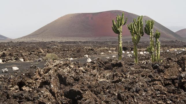 Buenas razones para viajar a Lanzarote este verano