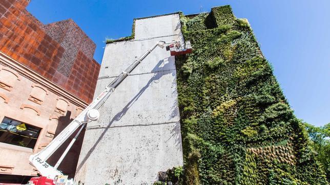 El jard n imposible de caixaforum muda su piel for Jardin vertical caixaforum madrid