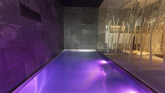 Hoteles en espa a con piscina en la habitaci n - Suite con piscina privada madrid ...