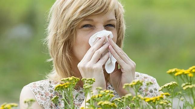 Las alergias aumentan cada año