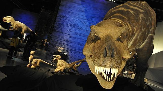 Los investigadores dicen haber encontrado restos de tejidos blandos en fragmentos fósiles de dinosaurios de hace 75 millones de años