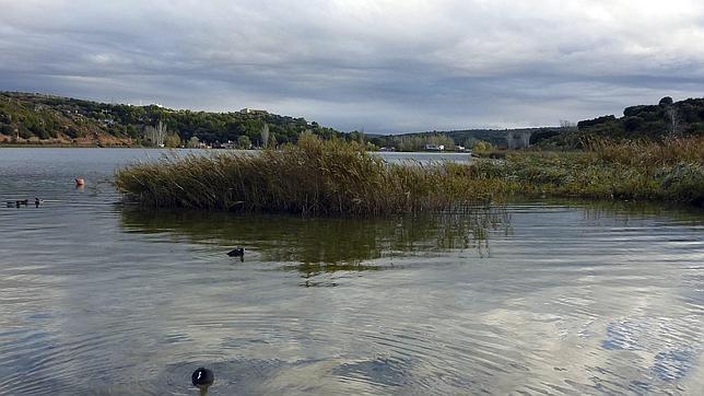 La laguna del Rey, en las Lagunas de Ruidera (Ciudad Real), es una de las zonas aptas para el baño